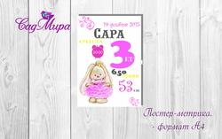 Постер-метрика А4